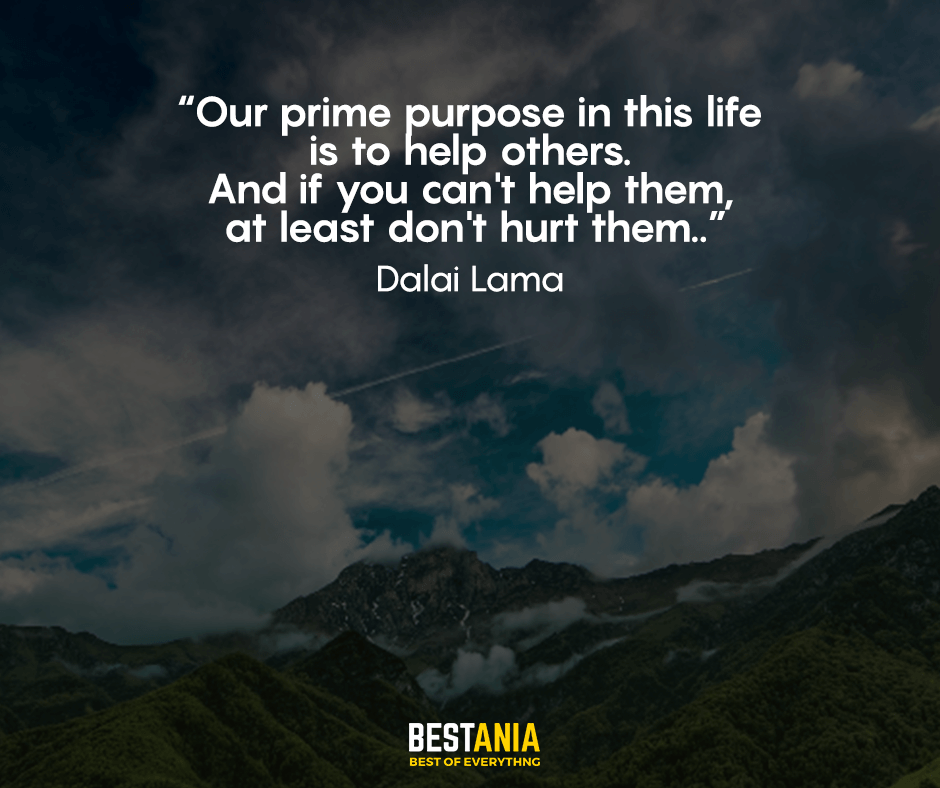 Our prime purpose in this life is to help others. And if you can't help them, at least don't hurt them. Dalai Lama