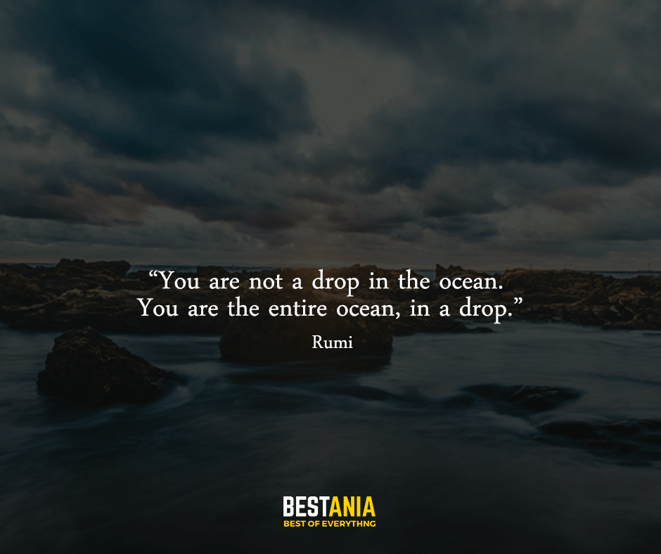 """You are not a drop in the ocean. You are the entire ocean, in a drop. """"Rumi"""""""