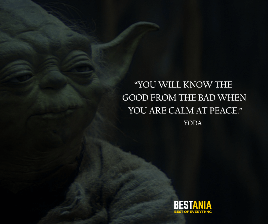 "You will know the good from the bad when you are calm at peace. ""Yoda"""