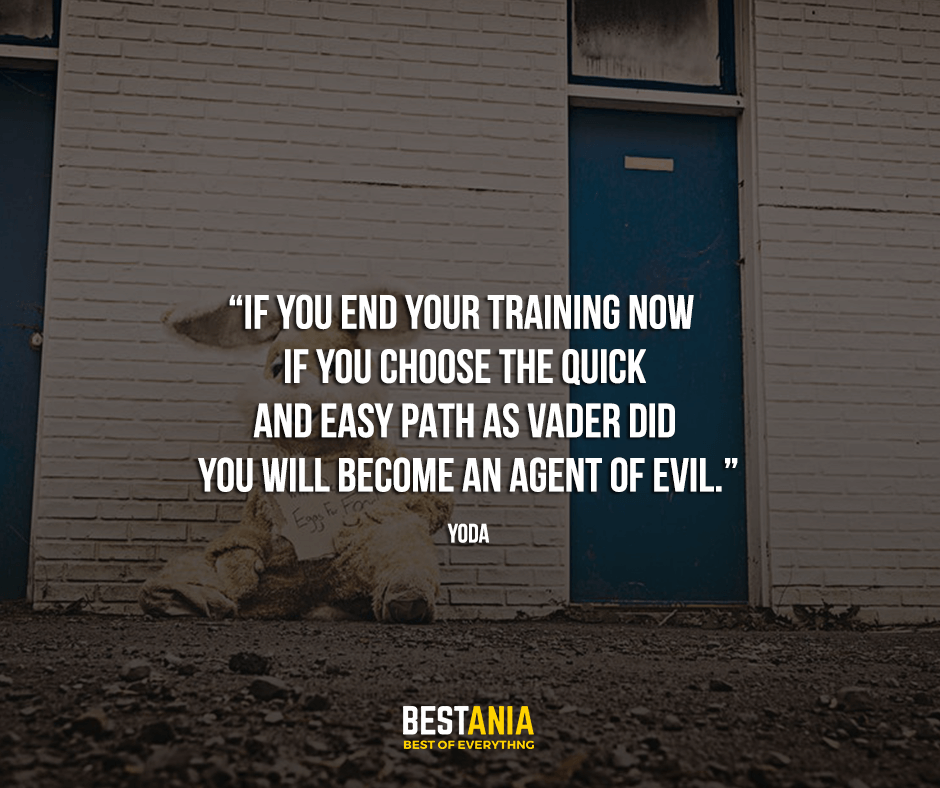 "If you end your training now — if you choose the quick and easy path as Vader did — you will become an agent of evil. ""Yoda"""