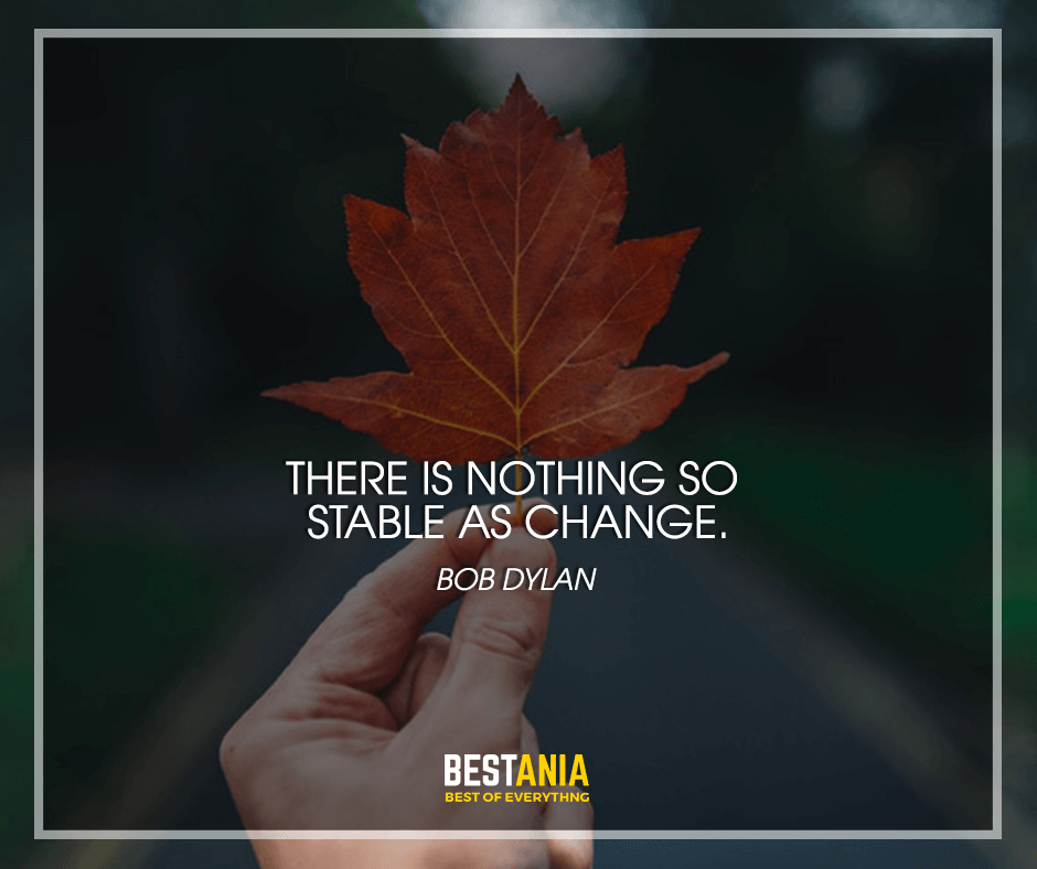 stable change- quotes by bob