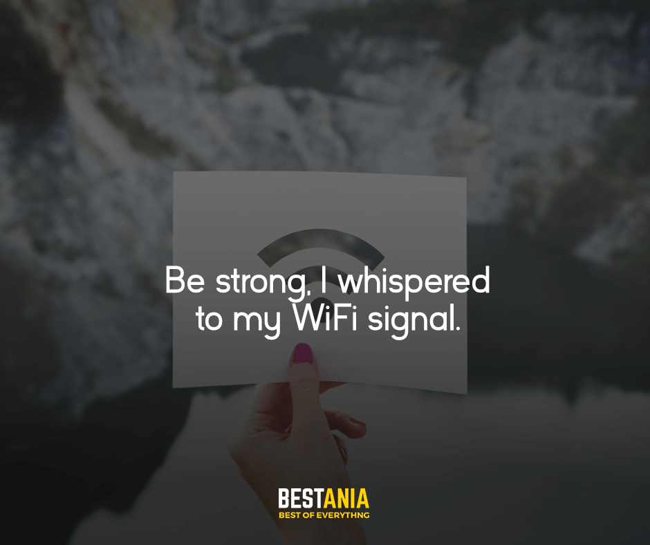 Be strong, I whispered to my WiFi signal.