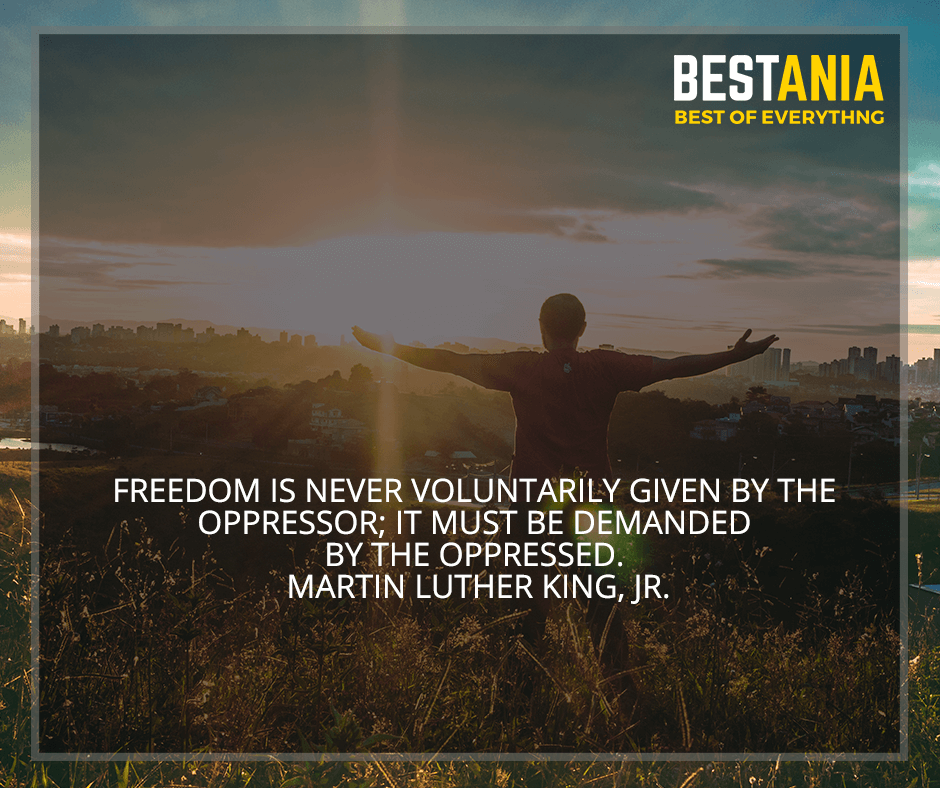 """""""Freedom is never voluntarily given by the oppressor; it must be demanded by the oppressed"""" Martin Luther King, Jr."""