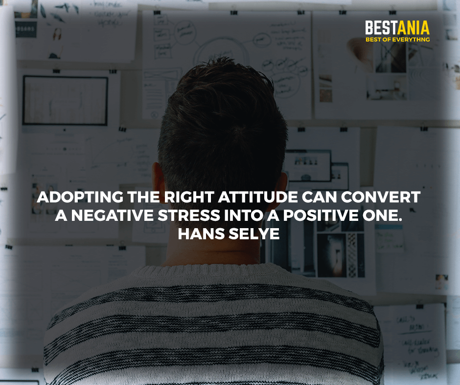 """Adopting the right attitude can convert a negative stress into a positive one."" Hans Selye"