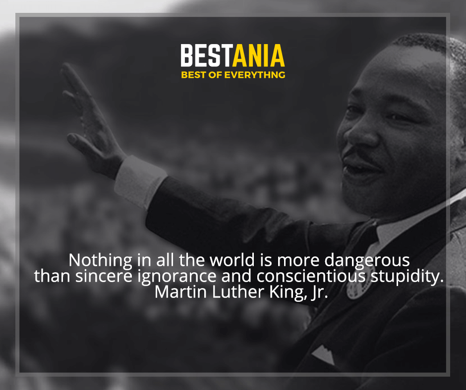"""""""Nothing in all the world is more dangerous than sincere ignorance and conscientious stupidity"""" Martin Luther King, Jr."""