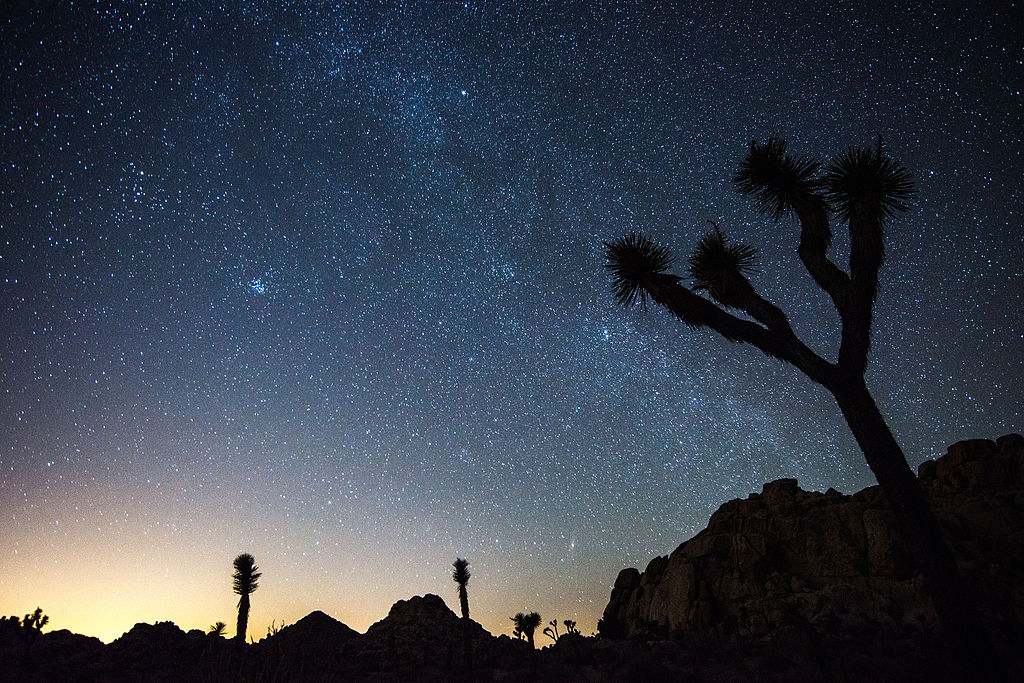 Joshua Tree National Park-night