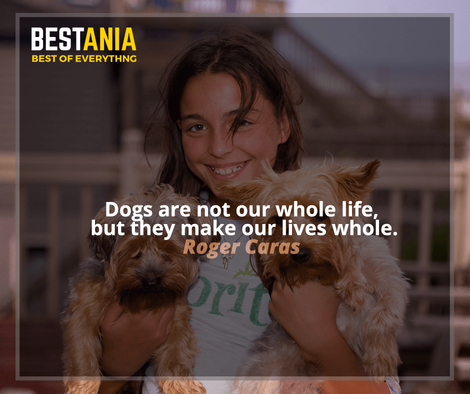 """Dogs are not our whole life, but they make our lives whole."" - Roger Caras"