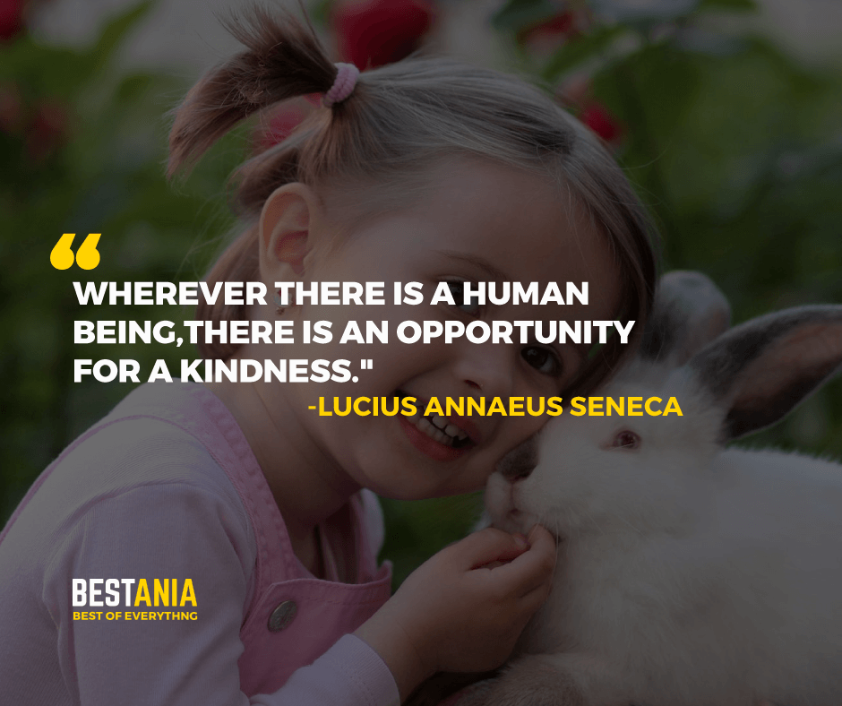 """WHEREVER THERE IS A HUMAN BEING, THERE IS AN OPPORTUNITY FOR A KINDNESS.""  -LUCIUS ANNAEUS SENECA"