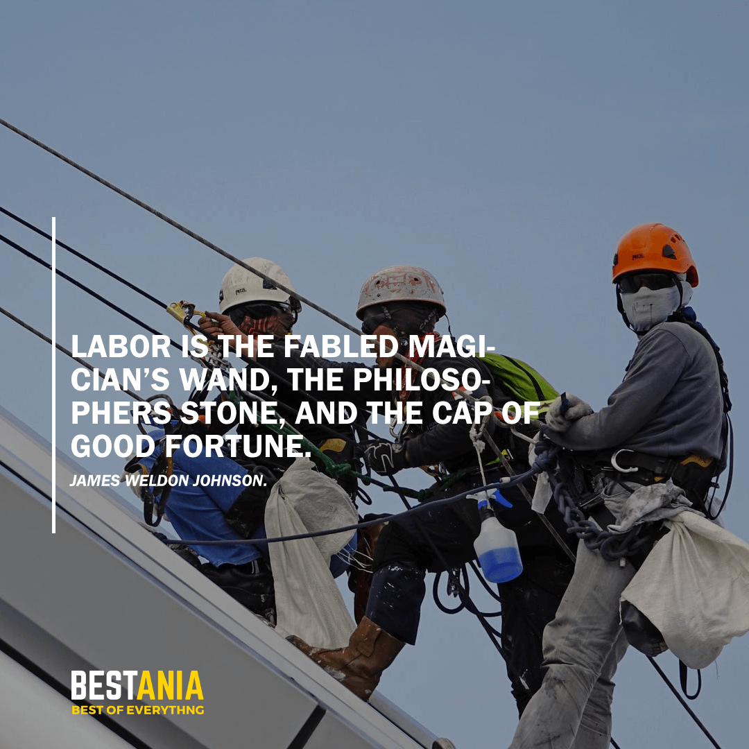 """""""LABOR IS THE FABLED MAGICIAN'S WAND, THE PHILOSOPHERS STONE, AND THE CAP OF GOOD FORTUNE.""""   JAMES WELDON JOHNSON"""