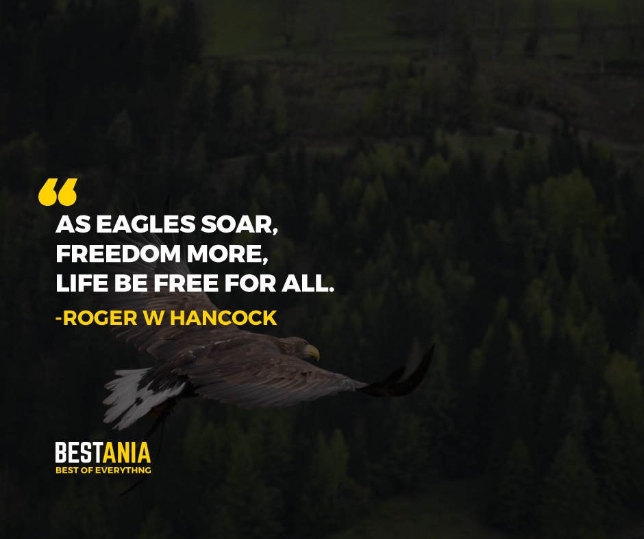 """""""AS EAGLES SOAR, FREEDOM MORE, LIFE IS FREE FOR ALL."""" ROGER W HANCOCK"""