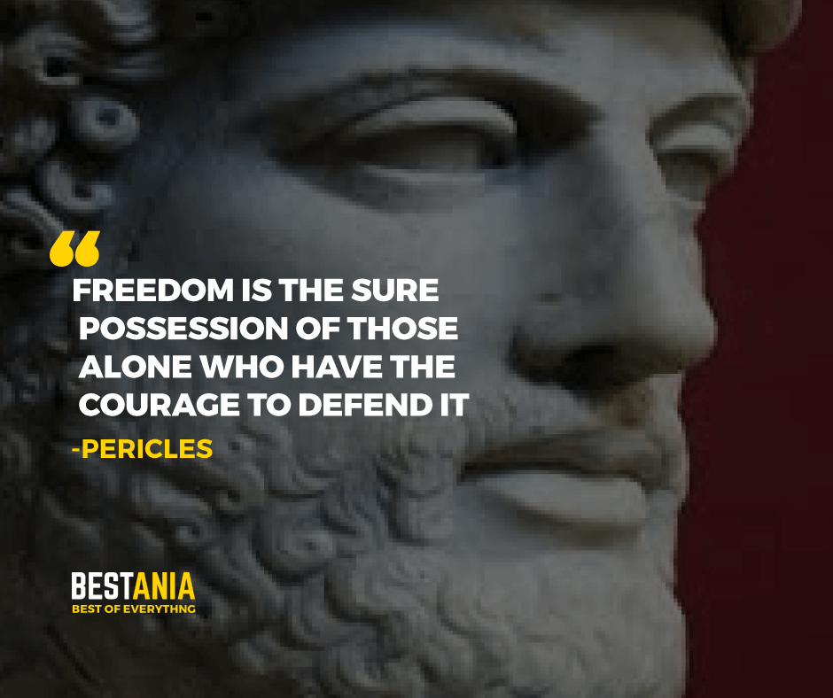 """""""FREEDOM IS THE SURE POSSESSION OF THOSE ALONE WHO HAVE THE COURAGE TO DEFEND IT.""""  PERICLES"""