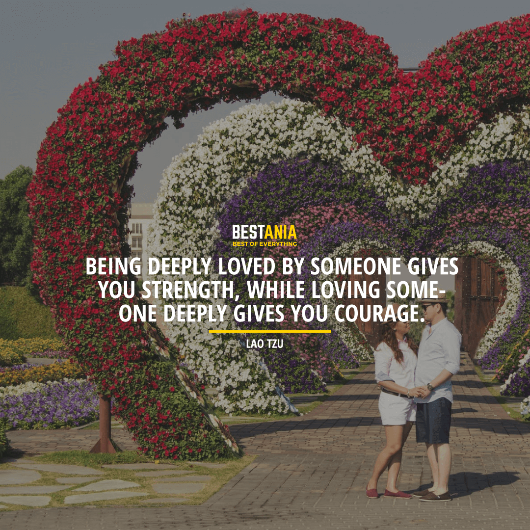 """""""BEING DEEPLY LOVED BY SOMEONE GIVES YOU STRENGTH WHILE LOVING SOMEONE DEEPLY GIVES YOU COURAGE. """"  ~ LAO TZU"""