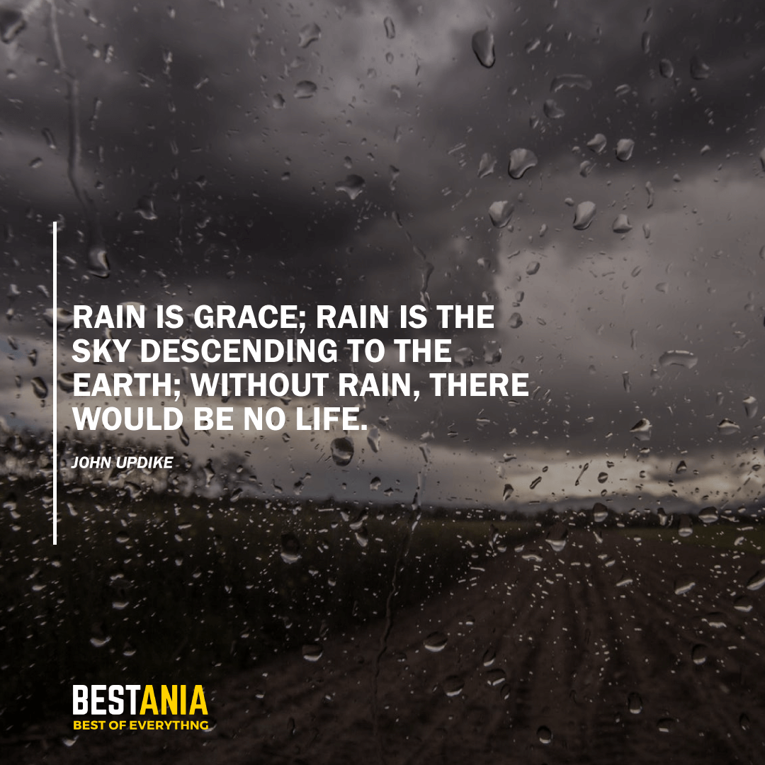 """RAIN IS GRACE; RAIN IS THE SKY DESCENDING TO THE EARTH; WITHOUT RAIN, THERE WOULD BE NO LIFE.""  JOHN UPDIKE"