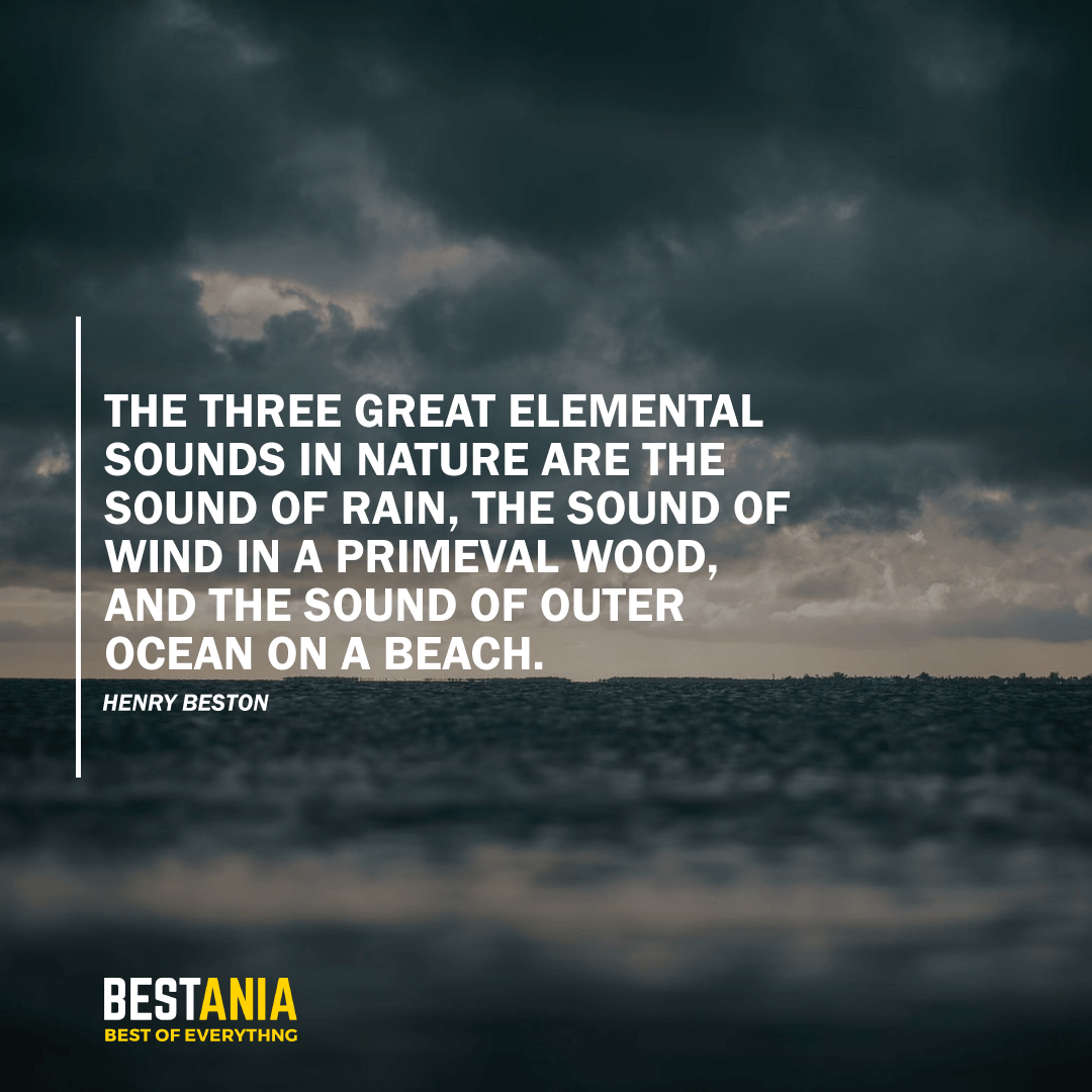 """THE THREE GREAT ELEMENTAL SOUNDS IN NATURE ARE THE SOUND OF RAIN, THE SOUND OF WIND IN A PRIMEVAL WOOD, AND THE SOUND OF OUTER OCEAN ON A BEACH.""  HENRY BESTON"