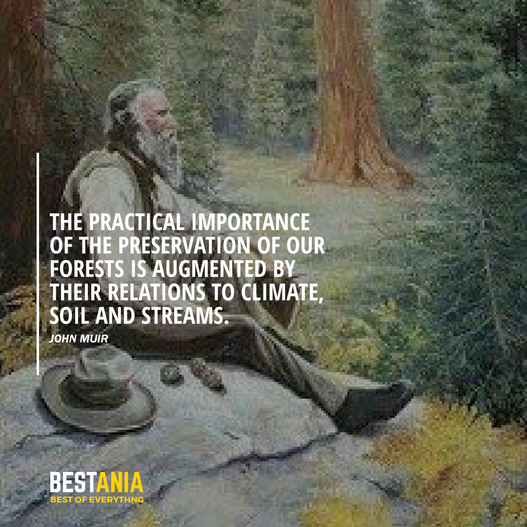 """THE PRACTICAL IMPORTANCE OF THE PRESERVATION OF OUR FORESTS IS AUGMENTED BY THEIR RELATIONS TO CLIMATE, SOI, AND STREAMS."" JOHN MUIR"