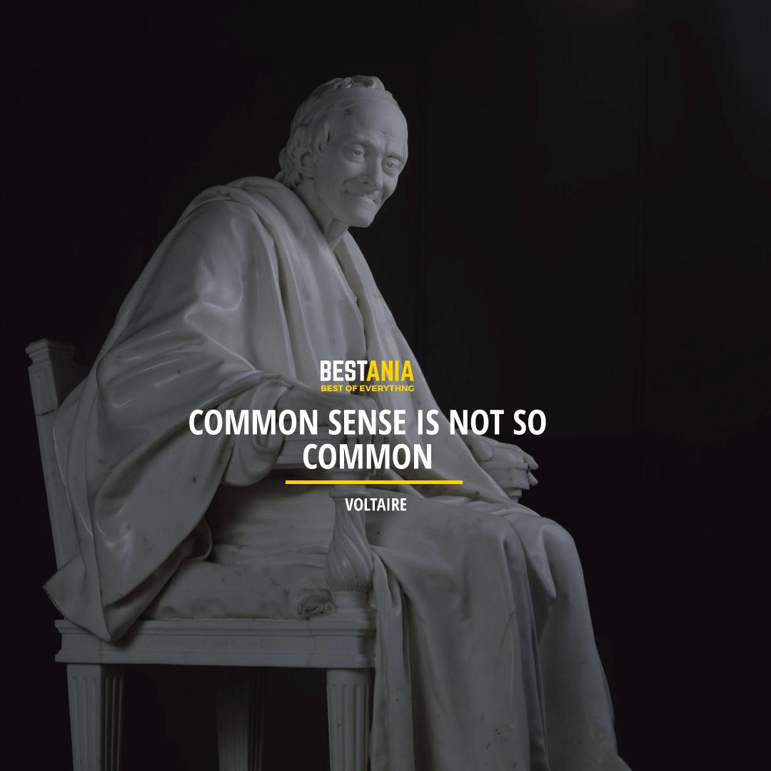 """COMMON SENSE IS NOT SO COMMON.""  VOLTAIRE"
