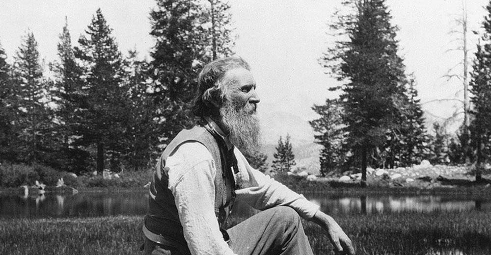 Best John Muir Quotes About Nature