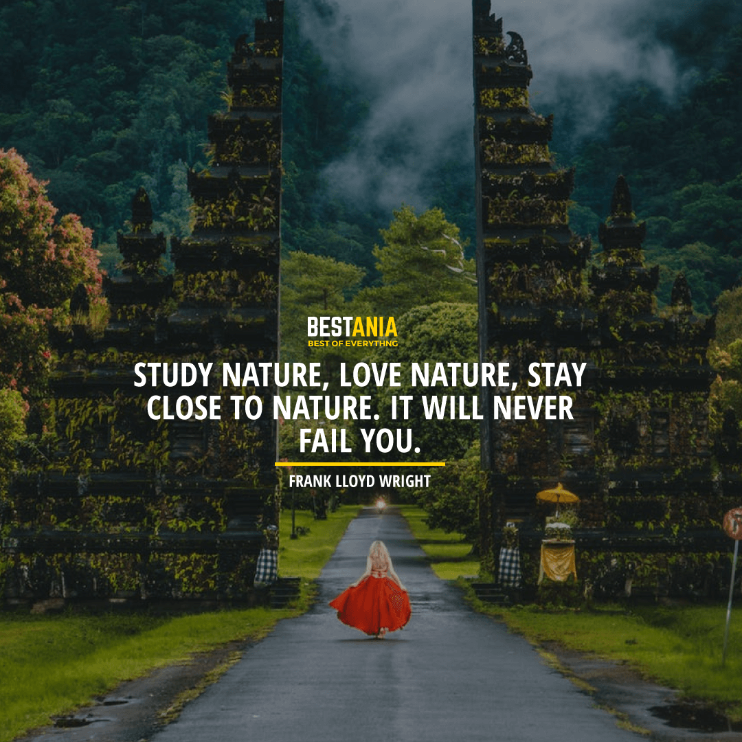 """STUDY NATURE, LOVE NATURE, STAY CLOSE TO NATURE. IT WILL NEVER FAIL YOU."" FRANK LLOYD WRIGHT"
