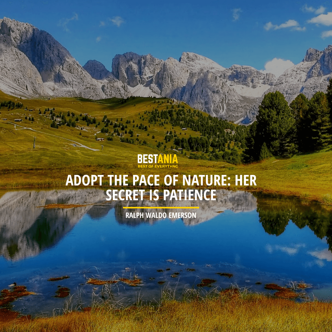"""ADOPT THE PACE OF NATURE: HER SECRET IS PATIENCE."" RALPH WALDO EMERSON"
