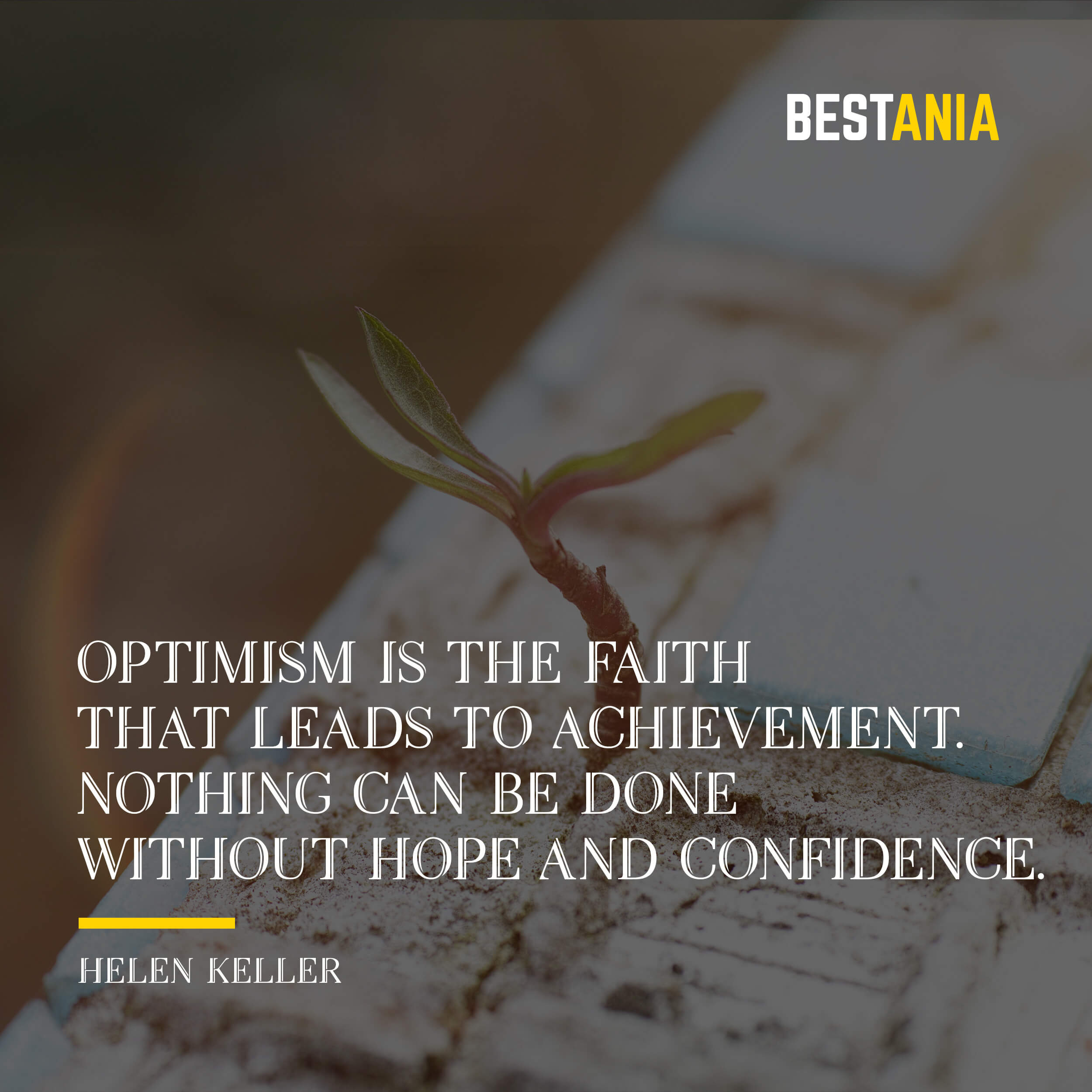 """OPTIMISM IS THE FAITH THAT LEADS TO ACHIEVEMENT. NOTHING CAN BE DONE WITHOUT HOPE AND CONFIDENCE."" HELEN KELLER"