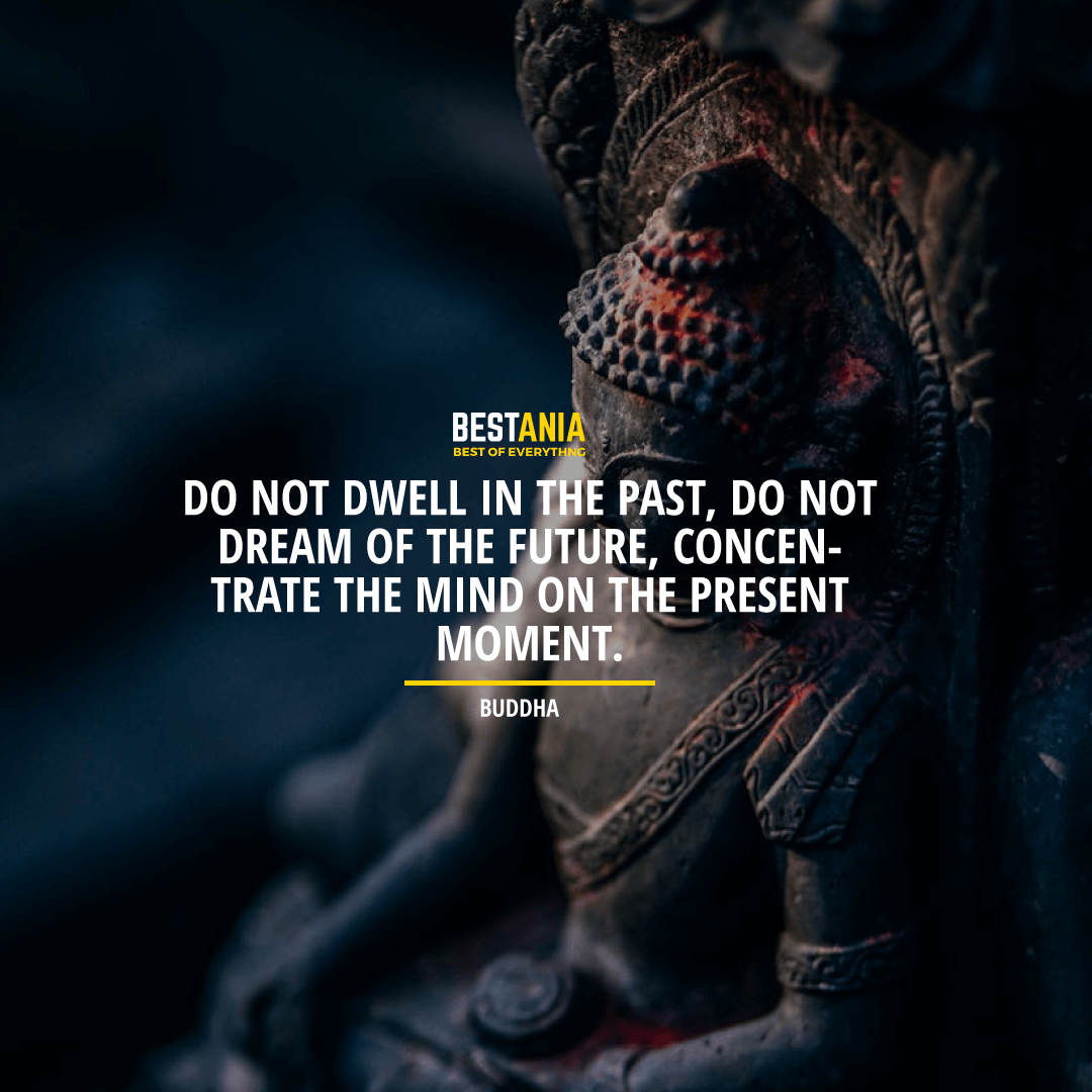 "DO NOT DWELL IN THE PAST, DO NOT DREAM OF THE FUTURE, CONCENTRATE THE MIND ON THE PRESENT MOMENT."" BUDDHA"