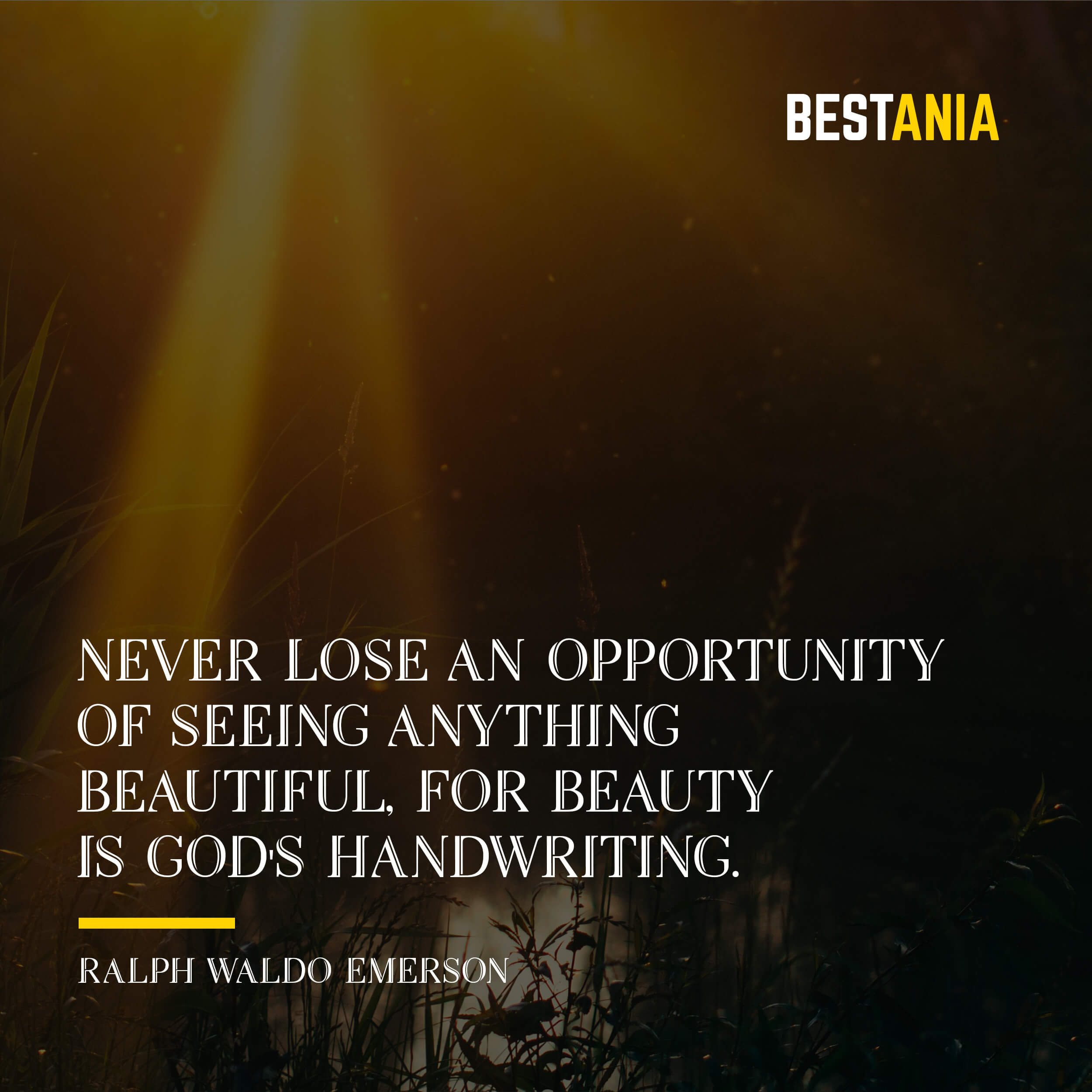 """NEVER LOSE AN OPPORTUNITY OF SEEING ANYTHING BEAUTIFUL, FOR BEAUTY IS GOD'S HANDWRITING."" RALPH WALDO EMERSON"