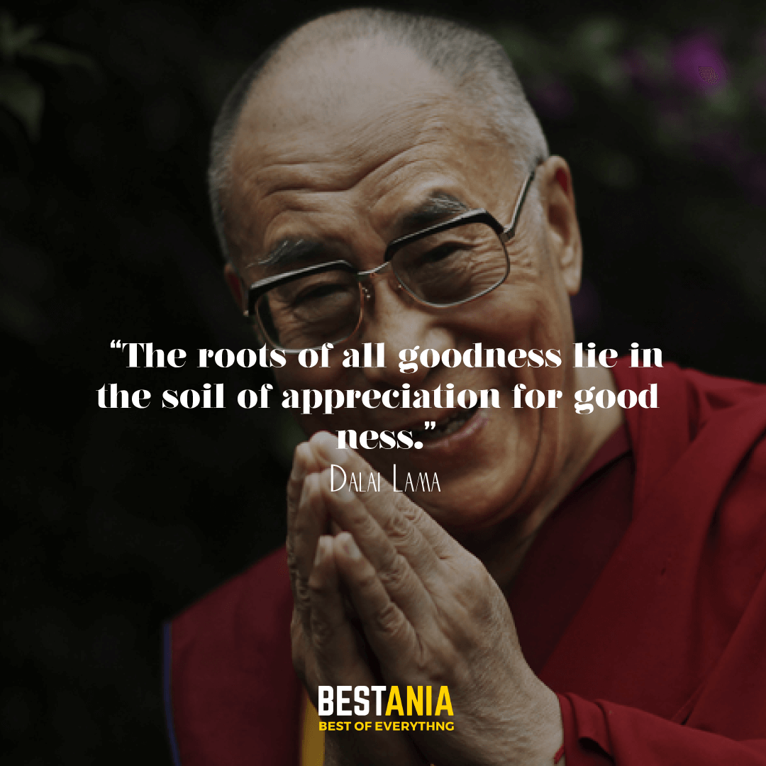"""""""The roots of all goodness lie in the soil of appreciation for goodness."""" —Dalai Lama"""