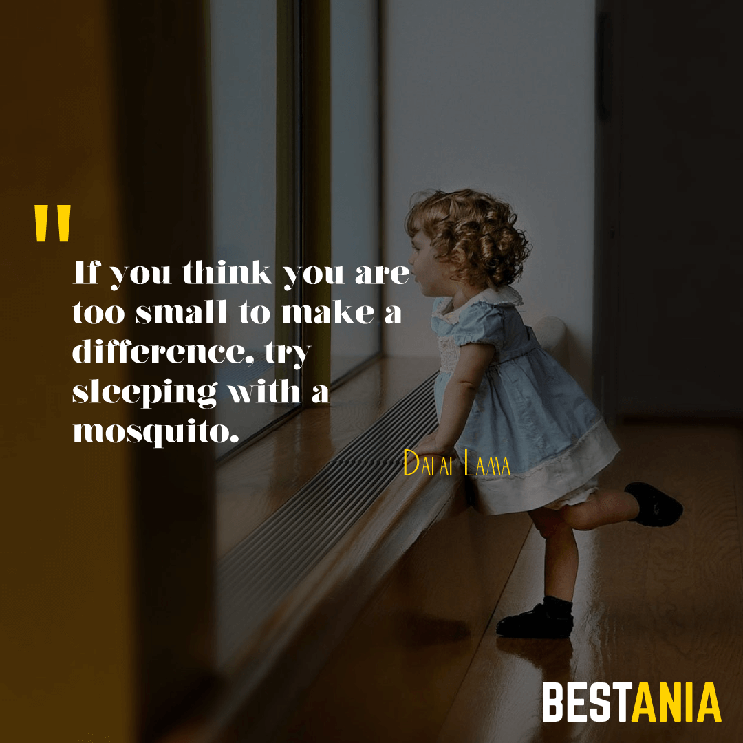 If you think you are too small to make a difference, try sleeping with a mosquito.Dalai Lama