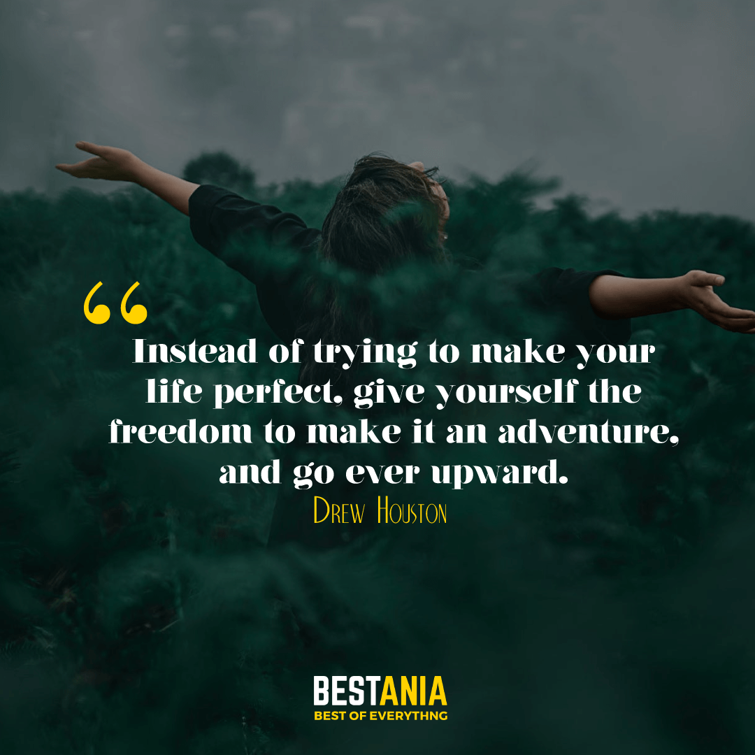 Instead of trying to make your life perfect, give yourself the freedom to make it an adventure, and go ever upward. Drew Houston