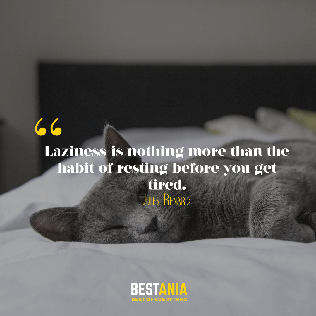 Laziness is nothing more than the habit of resting before you get tired. Jules Renard………….