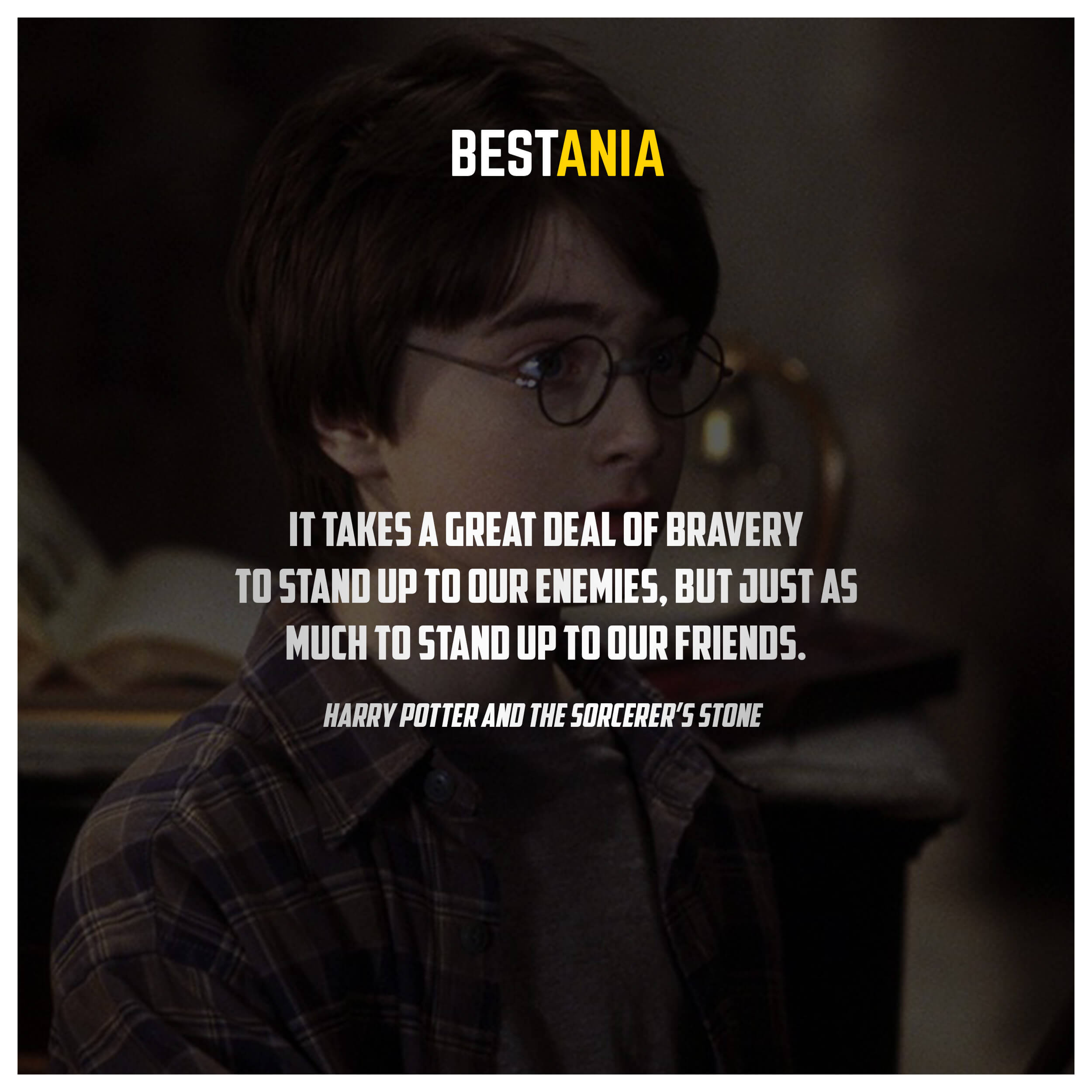 It takes a great deal of bravery to stand up to our enemies, but just as much to stand up to our friends. – Harry Potter and the Sorcerer's Stone