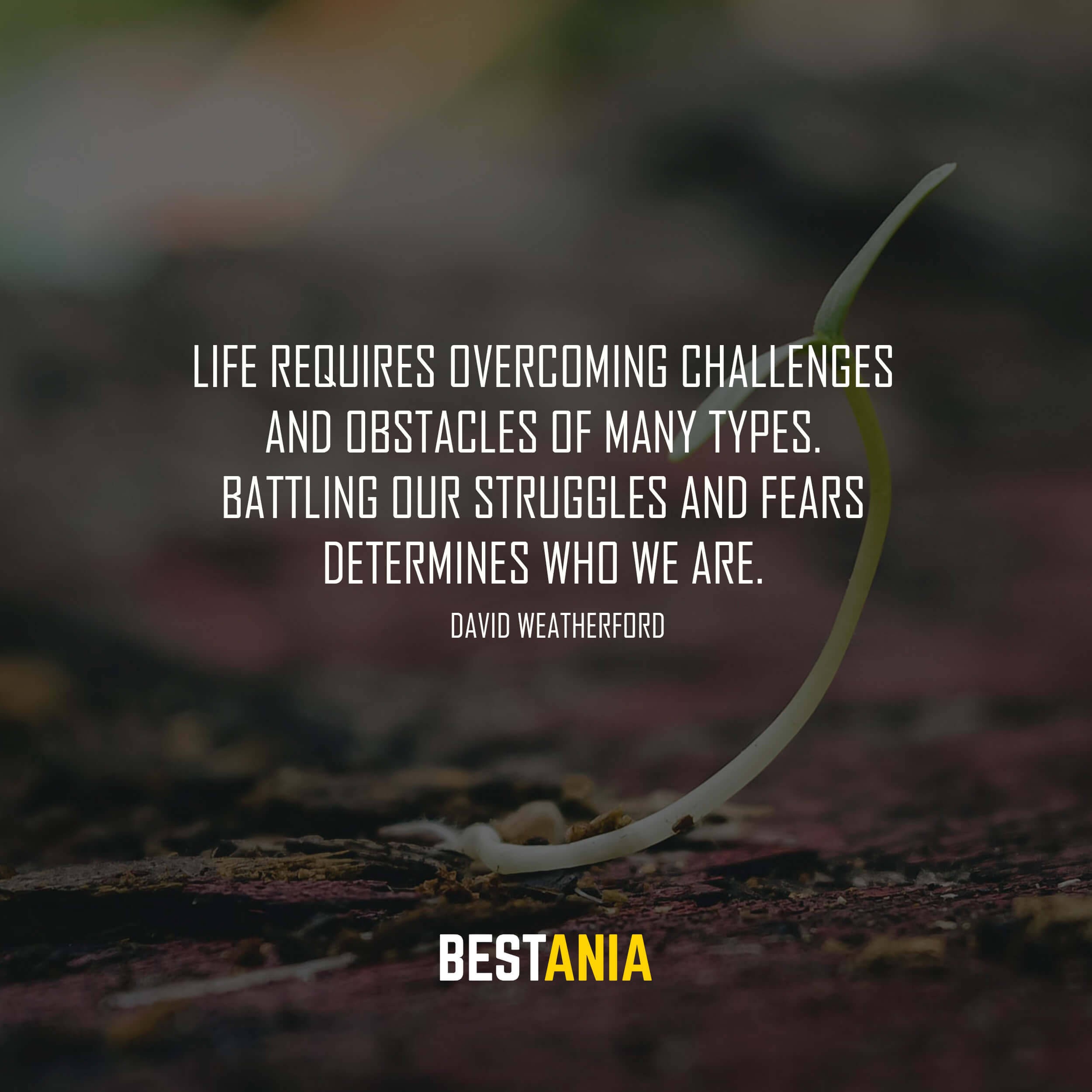Life requires overcoming challenges and obstacles of many types. Battling our struggles and fears determines who we are. David Weatherford
