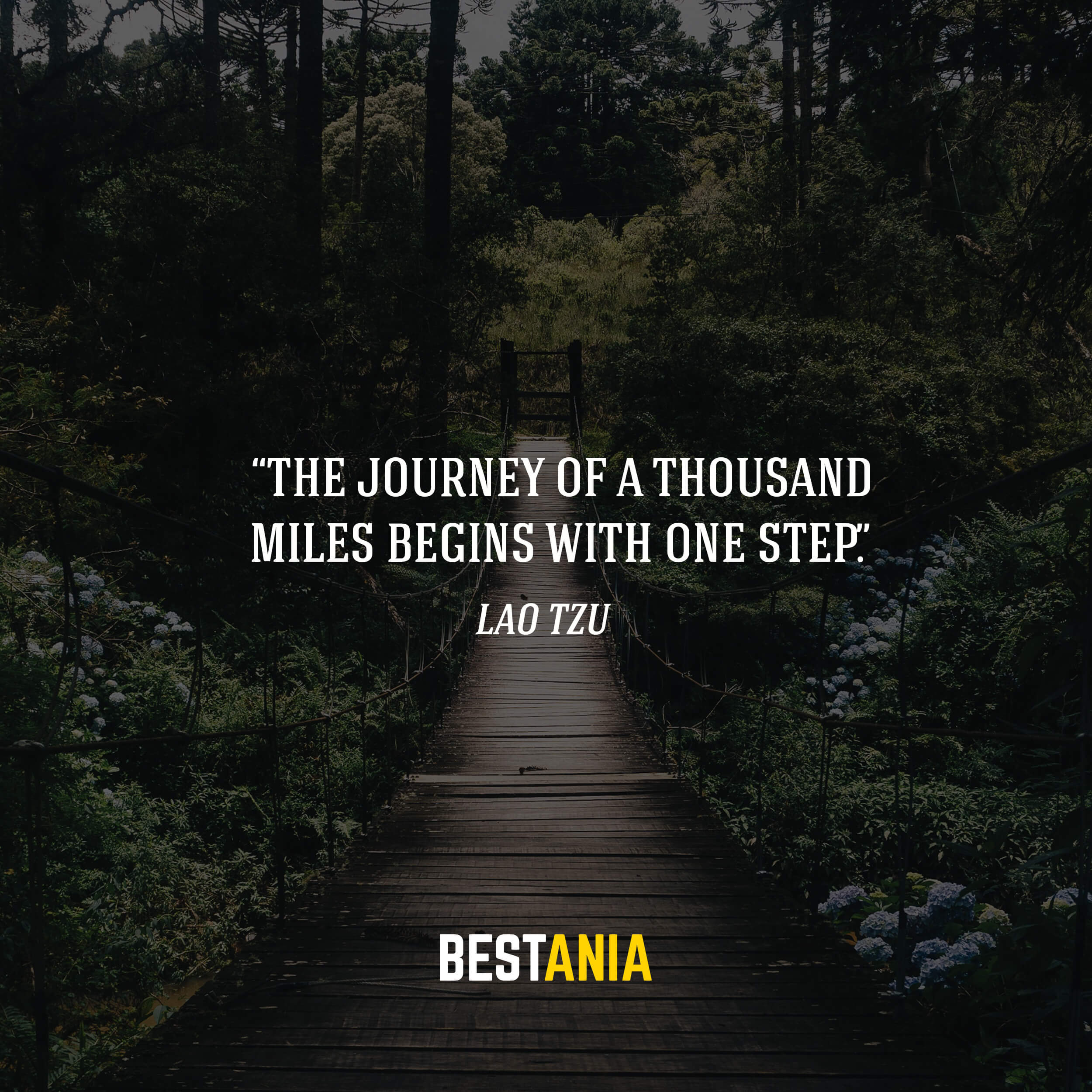 """The journey of a thousand miles begins with one step."" – Lao Tzu"