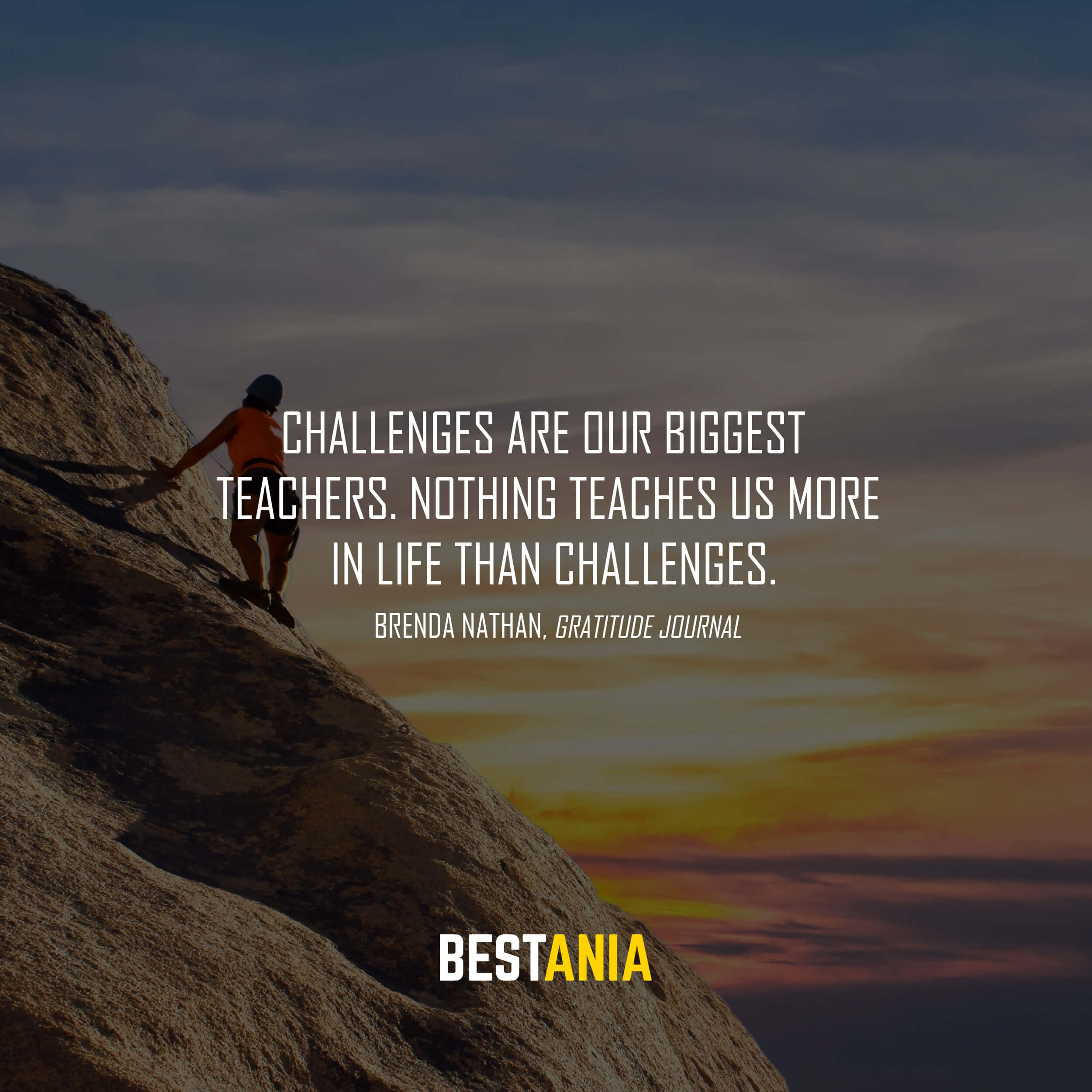 """""""Challenges are our biggest teachers. Nothing teaches us more in life than challenges."""" Brenda Nathan, Gratitude Journal"""