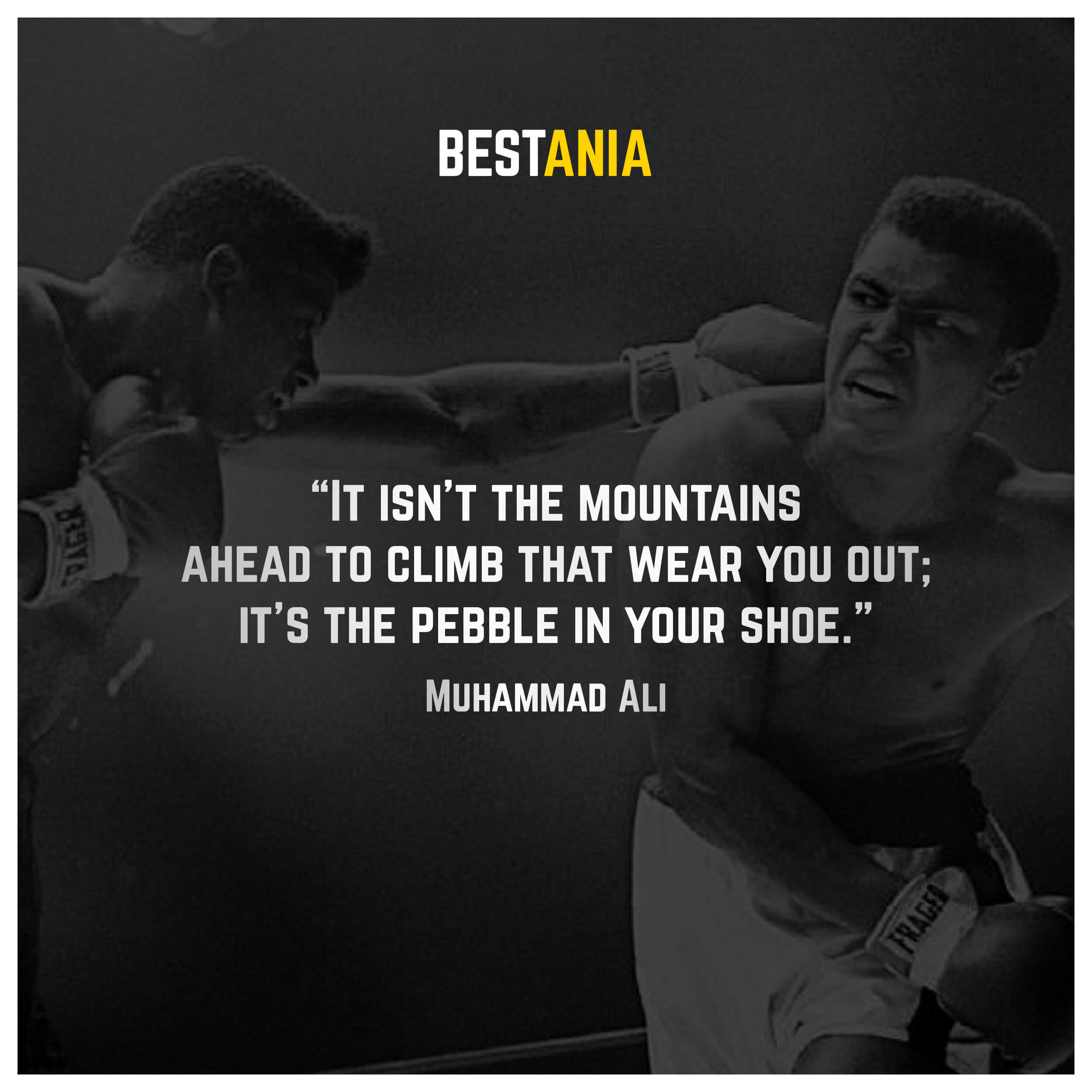 """""""It isn't the mountains ahead to climb that wear you out; it's the pebble in your shoe."""" – Muhammad Ali"""
