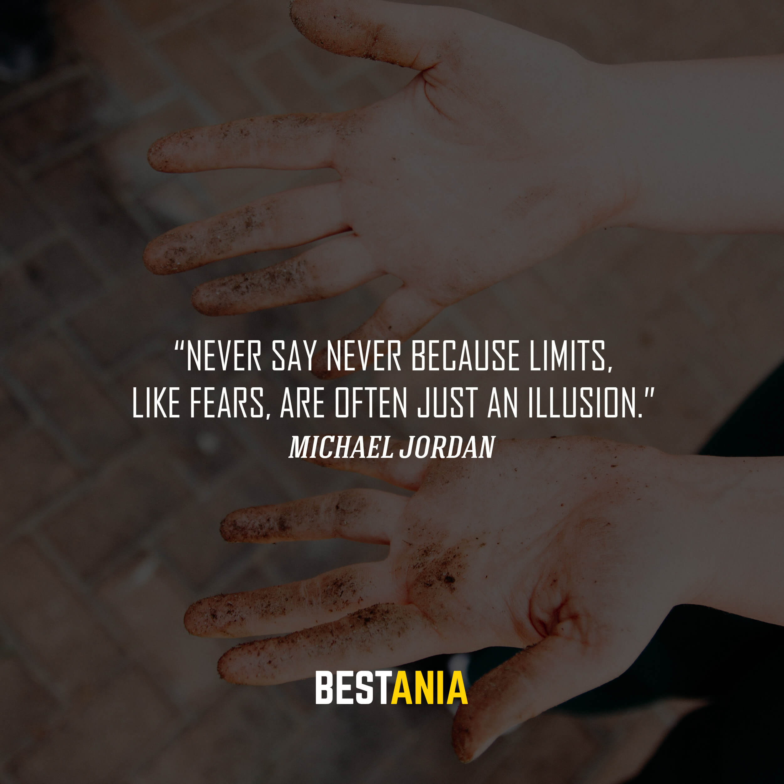 """""""Never say never because limits, like fears, are often just an illusion."""" – Michael Jordan"""