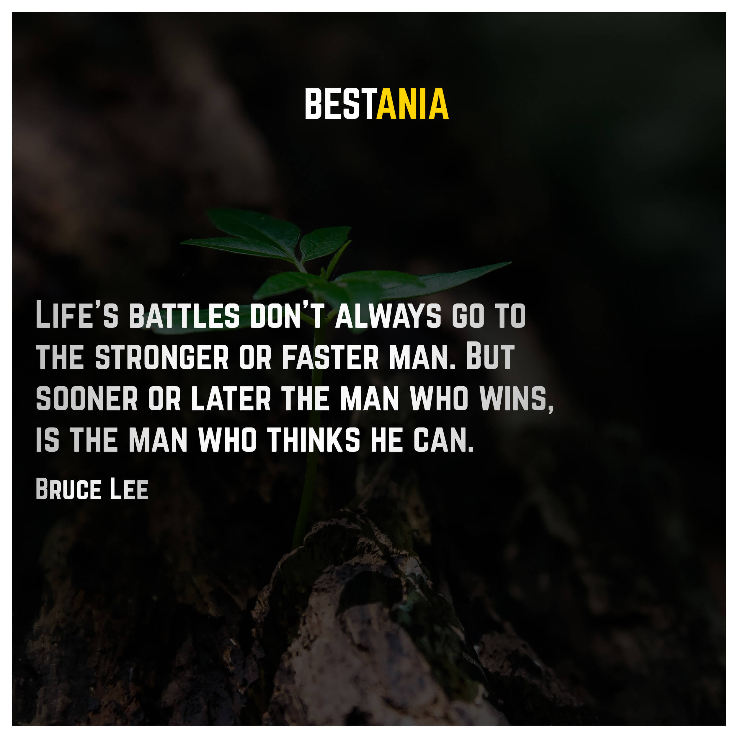 Life's battles don't always go to the stronger or faster man. But sooner or later the man who wins, is the man who thinks he can. Bruce Lee