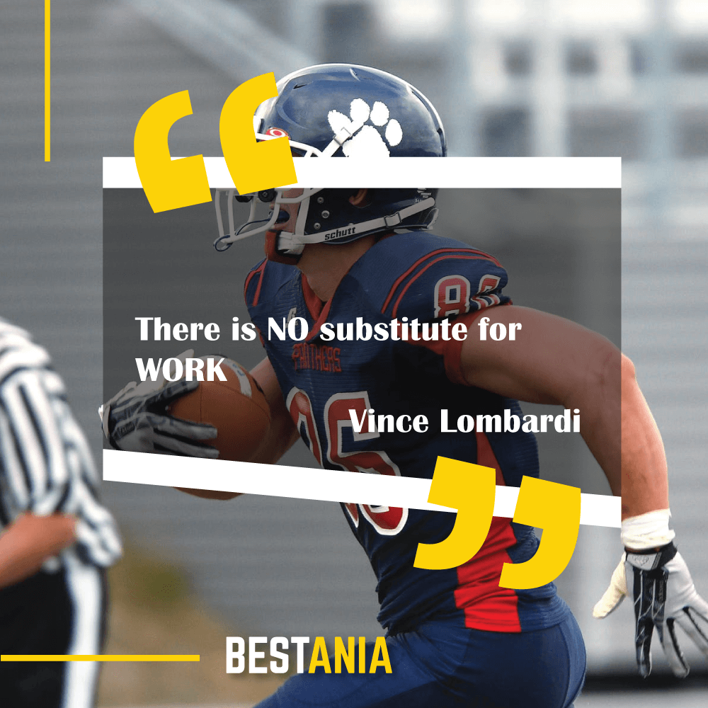 """""""There is NO substitute for WORK.""""--Vince Lombardi"""
