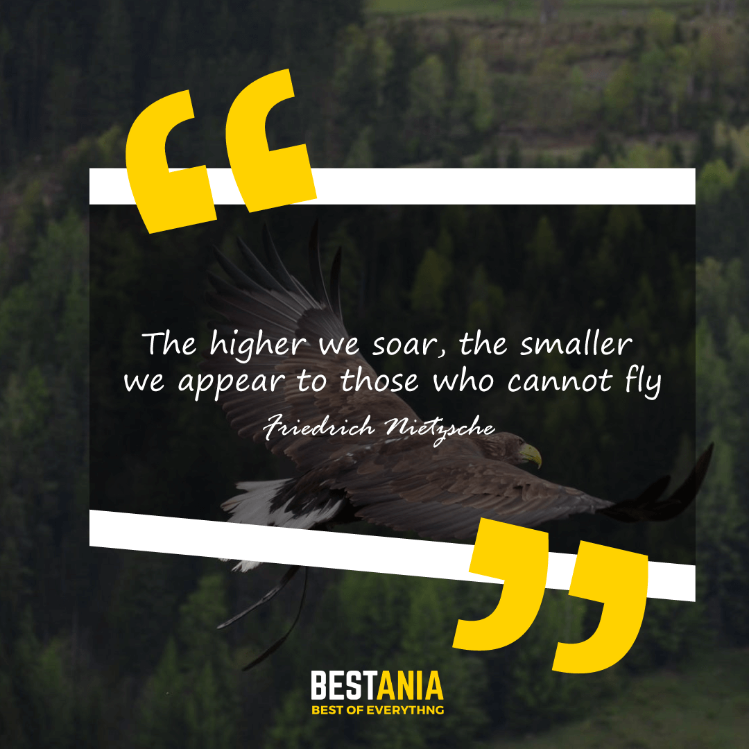 The higher we soar, the smaller we appear to those who cannot fly. Friedrich Nietzsche