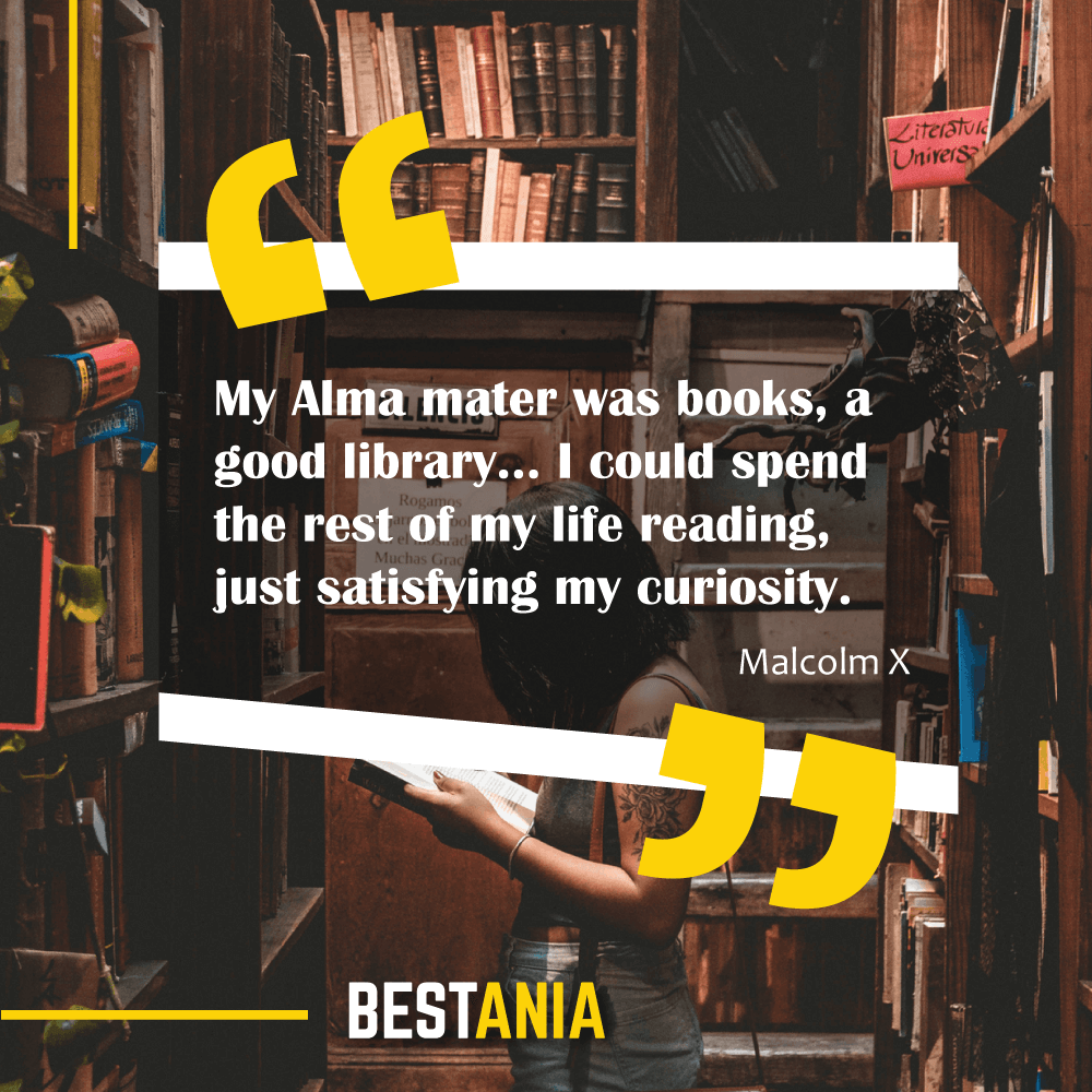 My Alma mater was books, a good library... I could spend the rest of my life reading, just satisfying my curiosity. Malcolm X