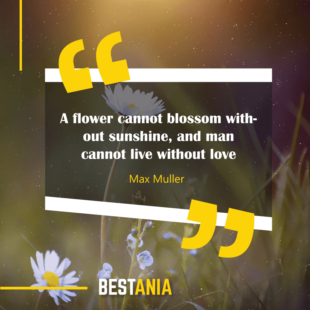 A flower cannot blossom without sunshine, and man cannot live without love. Max Muller