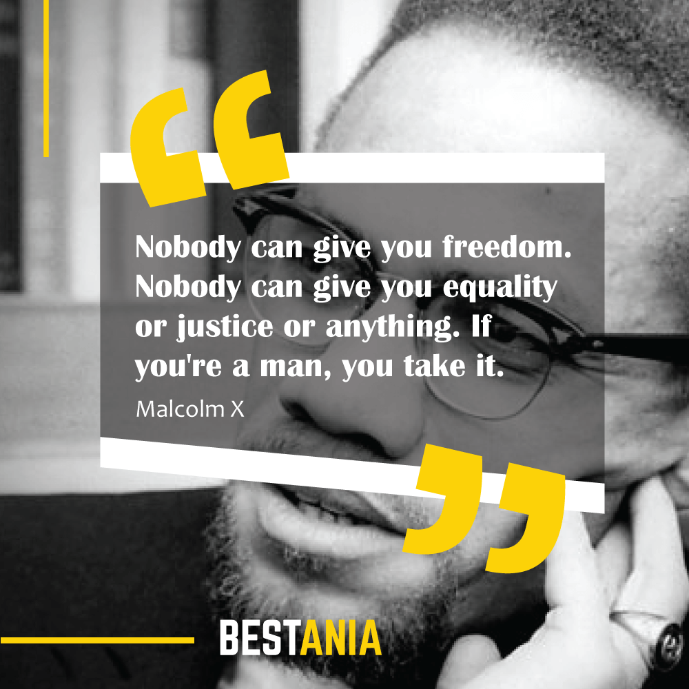 Nobody can give you freedom. Nobody can give you equality or justice or anything. If you're a man, you take it. Malcolm X