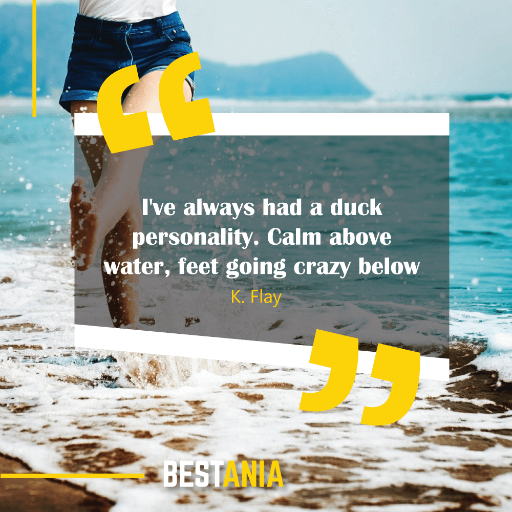 I've always had a duck personality. Calm above water, feet going crazy below. K. Flay